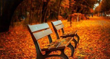 Tmavšie odtiene pre sychravý podzim