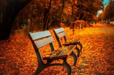 tmavší odstíny podzim