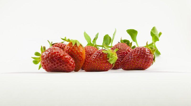 Ako pestovať ovocie tak, aby sme sa vyhli škodcom a chorobám?