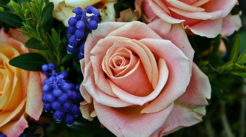 květiny na hrob