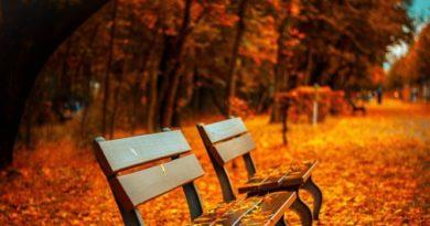 Tmavšie odtiene pre sychravú jeseň