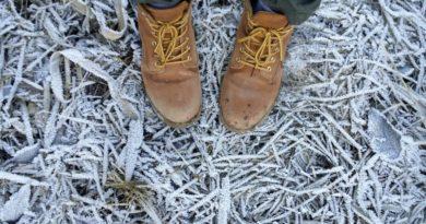 S farmárky do tuhej zimy